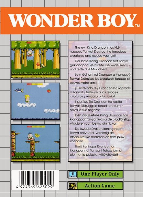 Face arriere du boxart du jeu Wonder Boy (Europe) sur Sega Game Gear