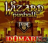 Image de l'ecran titre du jeu Wizard Pinball sur Sega Game Gear