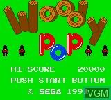 Image de l'ecran titre du jeu Woody Pop sur Sega Game Gear