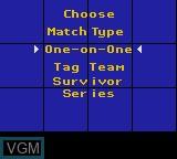 Image du menu du jeu WWF Raw sur Sega Game Gear