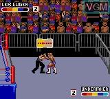 Image in-game du jeu WWF Raw sur Sega Game Gear