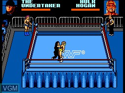 Image in-game du jeu WWF Steel Cage Challenge sur Sega Game Gear