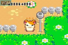 Hamtaro - Ham-Ham Games