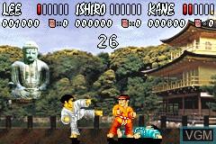 International Karate Advanced