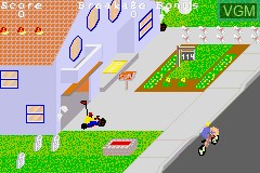 2 Games in One! - Paperboy + Rampage