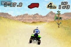 2 Games in 1 - Quad Desert Fury + Monster Trucks