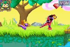 Image in-game du jeu 2-in-1 - Crash Bandicoot Purple - Ripto's Rampage & Spyro Orange - The Cortex Conspiracy sur Nintendo GameBoy Advance