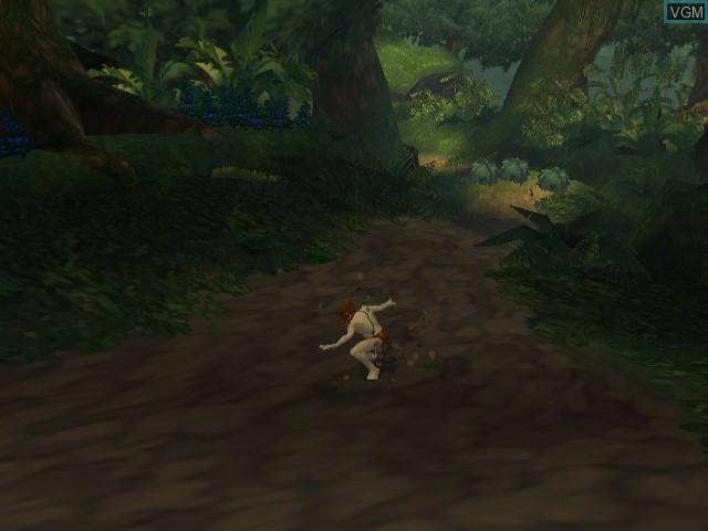 Tarzan - Freeride