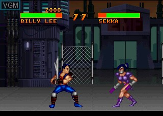 Double Dragon V