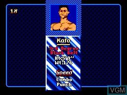Image du menu du jeu Pit Fighter sur Sega Master System
