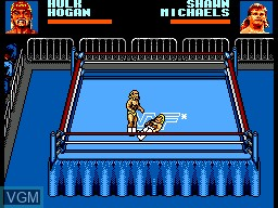 WWF Wrestlemania Steel Cage Challenge
