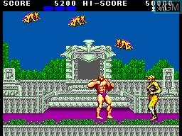 Image in-game du jeu Altered Beast sur Sega Master System