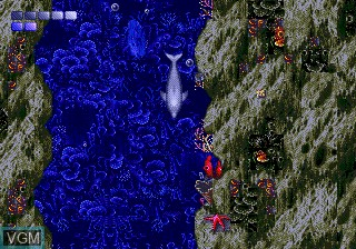 Image in-game du jeu ECCO The Dolphin sur Sega Megadrive