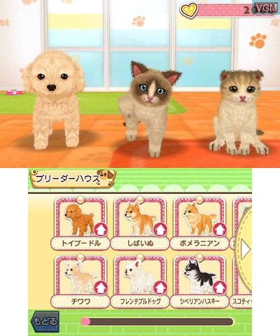 Image du menu du jeu Kawaii Pet to Kurasou! Wan Nyan & Idol Animal sur Nintendo 3DS