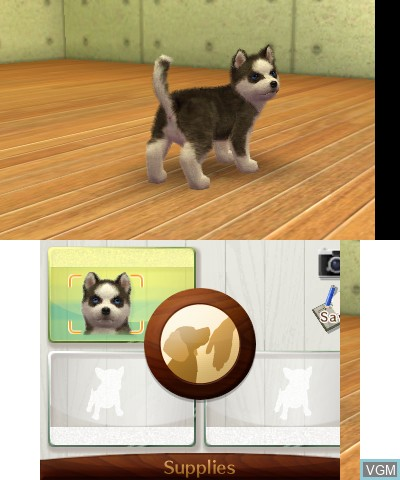 Nintendogs + Cats - French Bulldog & New Friends