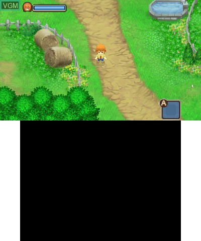 Harvest Moon 3D - The Tale of Two Towns