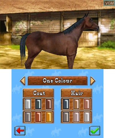 Image in-game du jeu 2 in 1- Horses 3D Vol.3 - My Riding Stables 3D - Jumping for the Team and My Western Horse 3D sur Nintendo 3DS