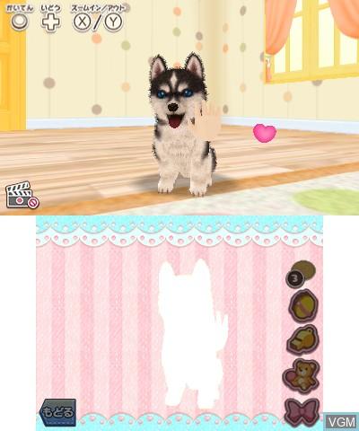 Image in-game du jeu Kawaii Pet to Kurasou! Wan Nyan & Idol Animal sur Nintendo 3DS