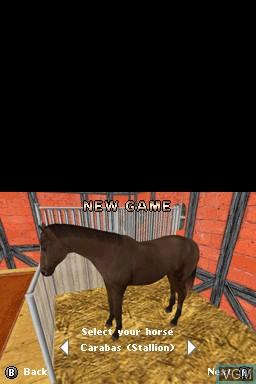3 in 1 - Horses