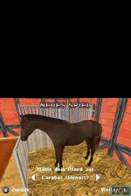 4 in 1 - Meine Tierarztpraxis + Meine Tierpension + Mein Gestuet + Mein Pferd