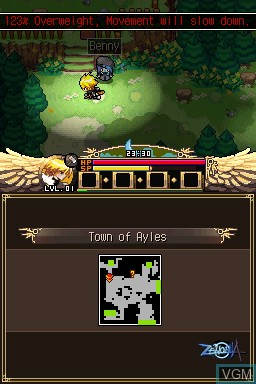 Image in-game du jeu Zenonia sur Nintendo DSi