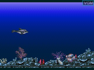 Image du menu du jeu Ecco Jr. and the Great Ocean Treasure Hunt! sur Sega Pico