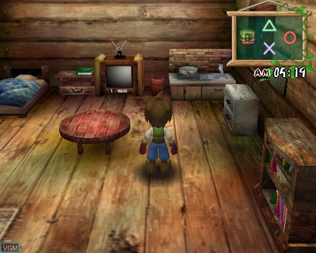 Harvest Moon - A Wonderful Life Special Edition