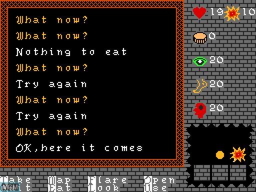 Image in-game du jeu Castle sur MGT Sam Coupé