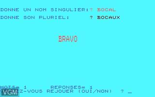 Image in-game du jeu Pluriel des Noms Simples sur Thomson MO5